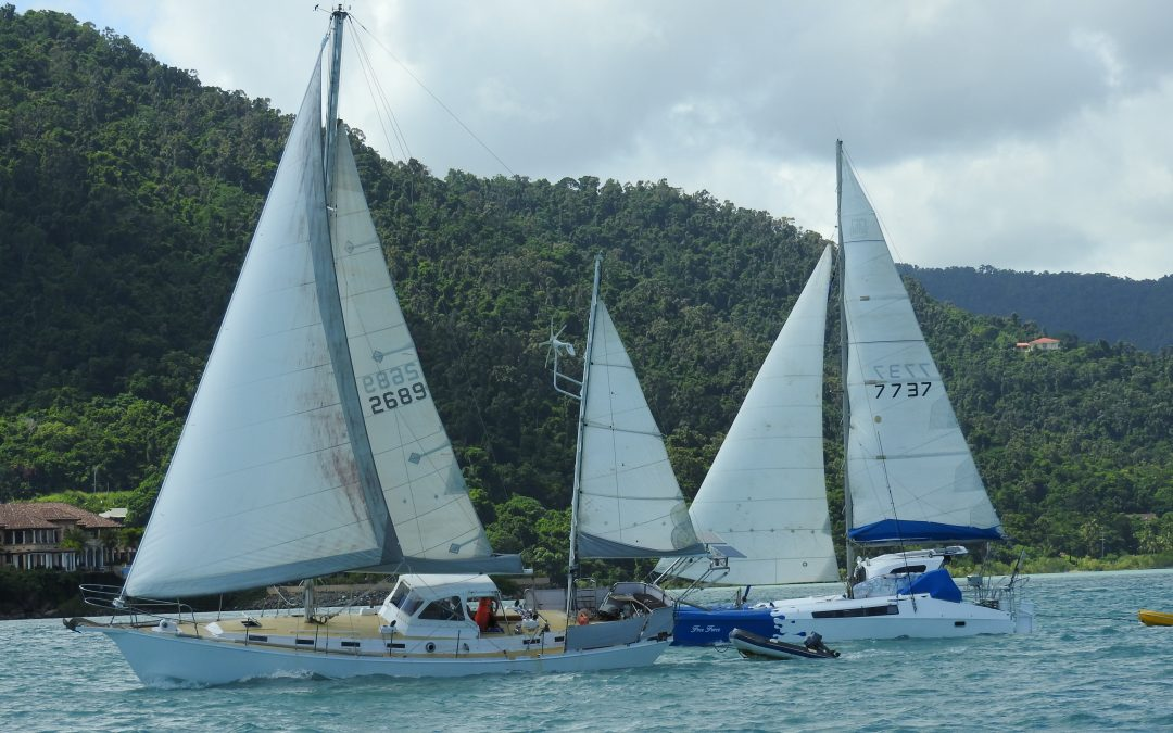 Combined APYC & WSC Cruise in Company